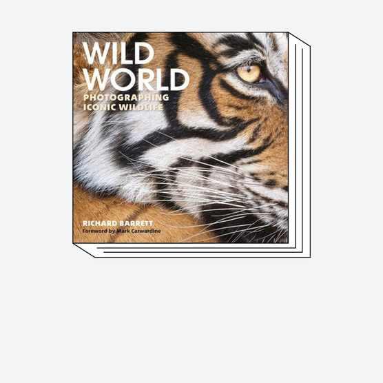 wildworld-book-fabric-square