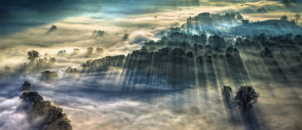 Sunlight streaming through fog wins Weather Photographer competition