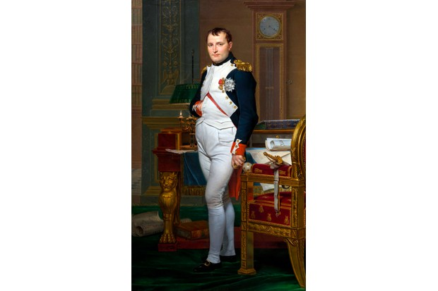 A portrait of Emperor Napoleon