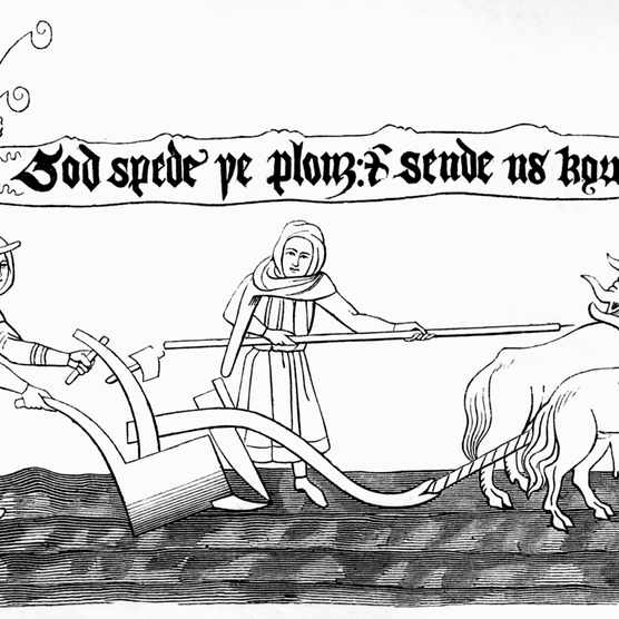 Medieval ploughmen ploughing with oxen