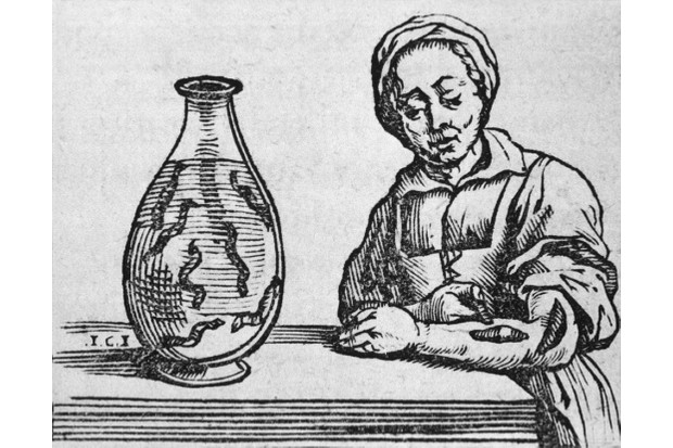 A woodcut from a 1639 treatise by Joannis Mommarti depicting a woman applying a medicinal leech to her forearm. In the early 19th century the medicinal leech soared in popularity, says Caroline Rance. (Photo by Everett Collection Historical/Alamy Stock Photo)