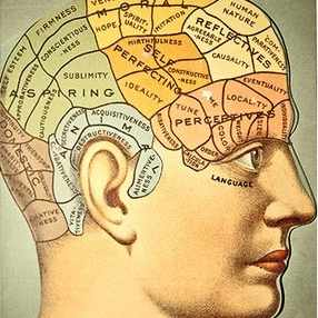 A phrenology model showing where on the skill certain character traits are believed to come from. (Photo by VintageMedStock/Getty Images)
