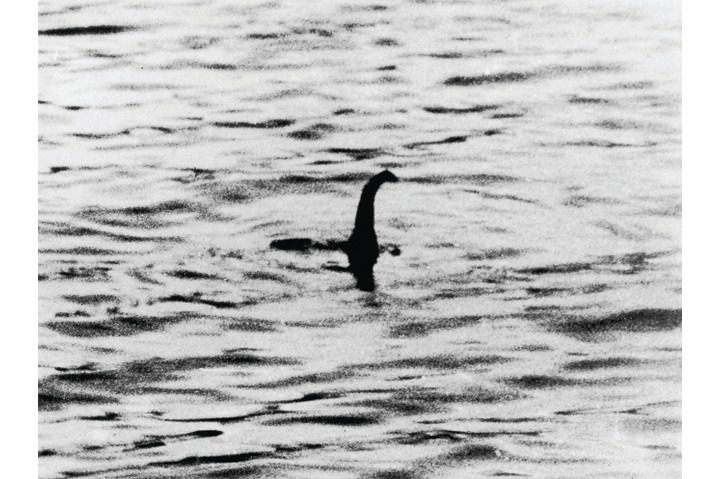 A photo which was believed to be of the Loch Ness Monster