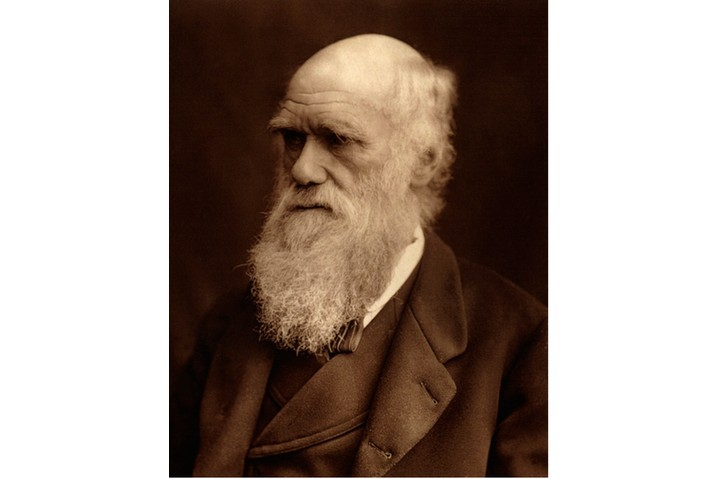 Charles Darwin sports his trademark bushy beard in 1877. (Photo by Corbis Historical/Getty Images)