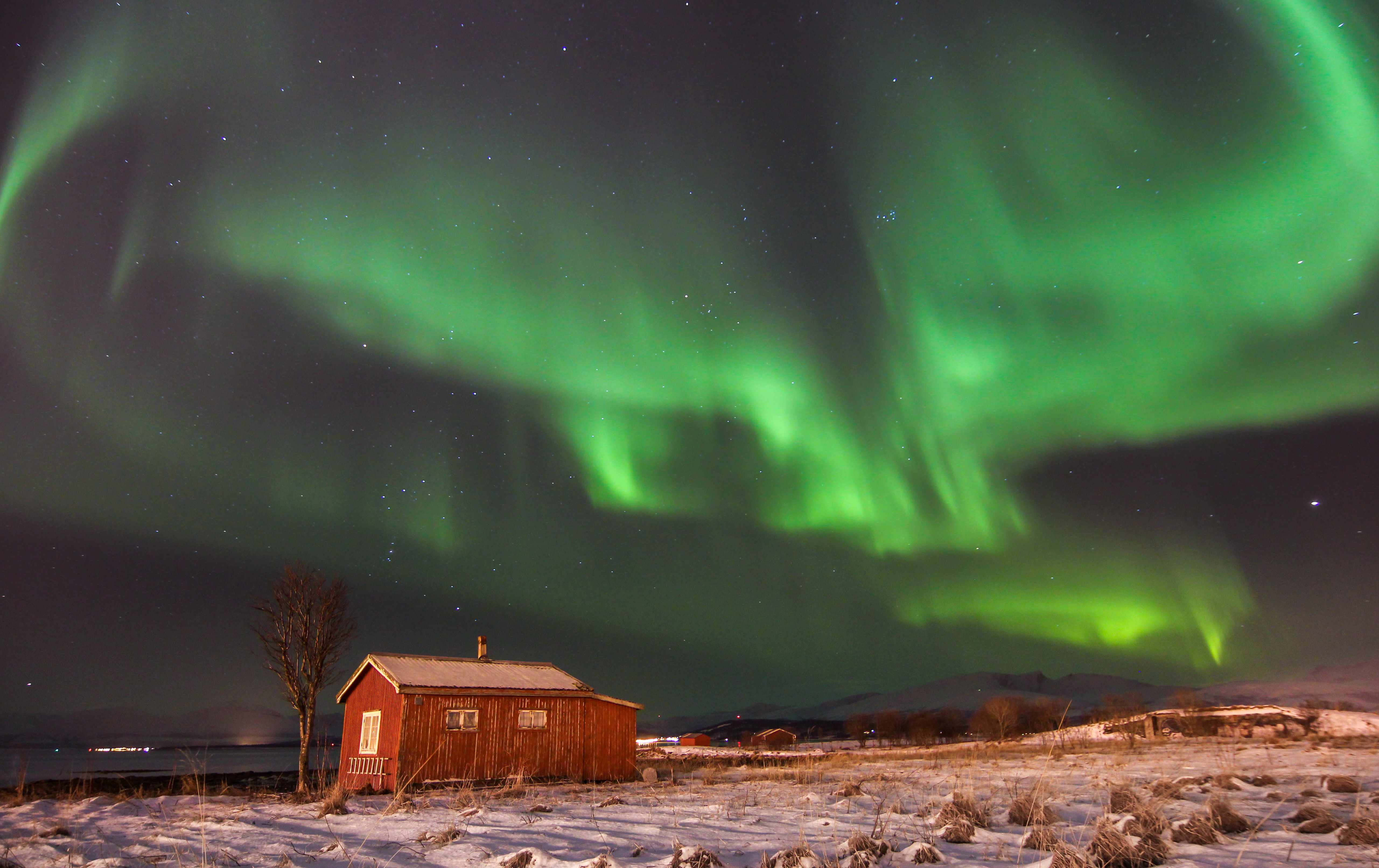Northern lights (aurora borealis) dances over an abandoned cabin in Tromsø, Northern Norway. (Photo by Hanneke Luijting via Getty Images)