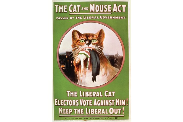This WSPU poster, condemning the Liberal government's 'Cat and Mouse Act' – which prolonged the hunger striker's suffering – first appeared in May 1914. (Photo by Museum of London)