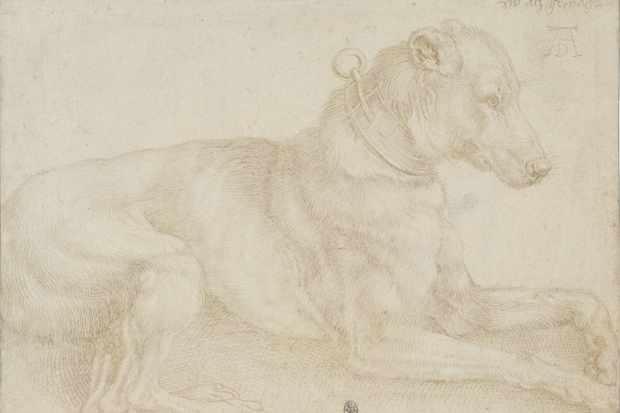 1.-Dürer-Dog-resting-562aee4