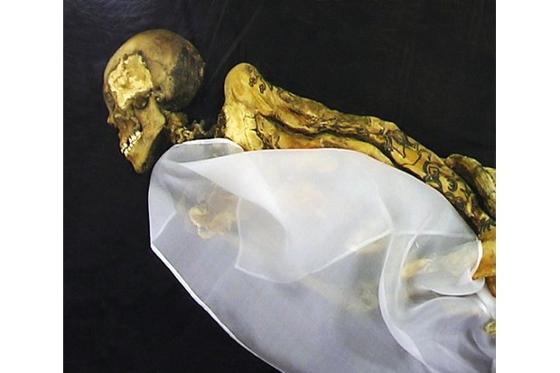 PFH1166498 Russia: Princess Ukok or Princess of the Altai, a mummy that was found in 1993 in a kurgan in the remote Ukok Plateau in the Altai Republic (photo); Republican National Museum, Gorno-Altaisk, Russia; (add.info.: The most famous undisturbed Pazyryk burial so far recovered is the 'Ice Maiden' found by archaeologist Natalia Polosmak in 1993, a rare example of a single woman given a full ceremonial wooden chamber-tomb in the 5th century BCE, accompanied by six horses. She had been buried over 2,400 years ago in a casket fashioned from the hollowed-out trunk of a larch tree.); Pictures from History; out of copyright