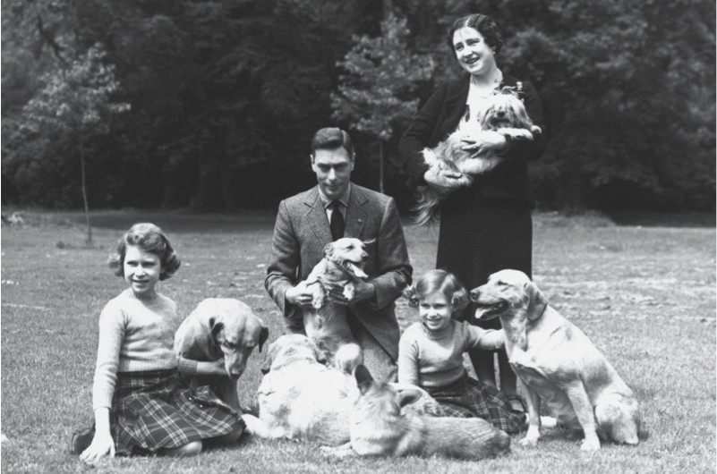 Happy family: the Duke and Duchess of York, princesses Elizabeth and Margaret and various dogs pictured in the grounds of Windsor Castle, June 1936 (Getty)