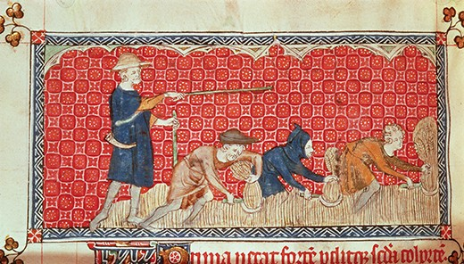 BL52779 Roy 2 B VII f.78 Reaping corn harvest in August, from the Queen Mary Psalter, c.1310-20 (vellum) by English School, (14th century); British Library, London, UK; © British Library Board. All Rights Reserved; PERMISSION REQUIRED FOR NON EDITORIAL USAGE; English,  out of copyright