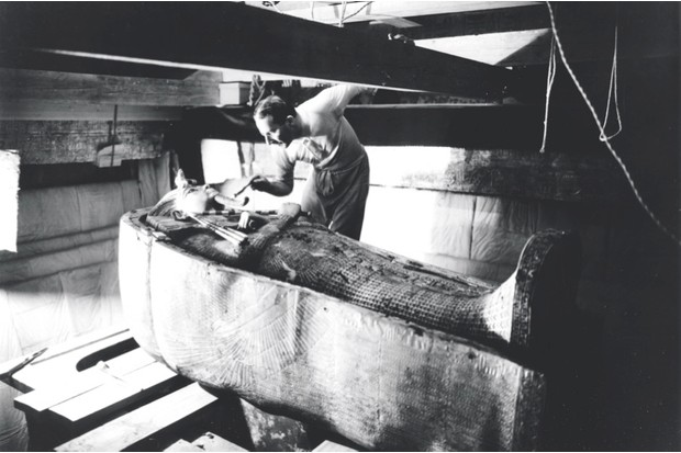 What killed Tutankhamun?