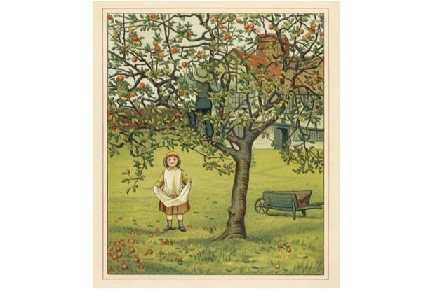 apples pic 2 4038d78