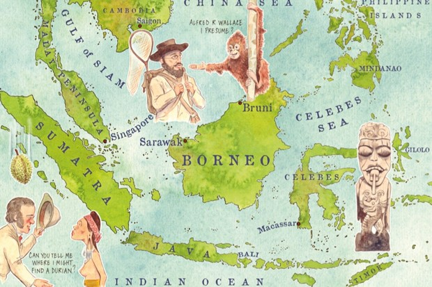 Illustration by Jonty Clark, based on Alfred Russel Wallace's 1868 map.