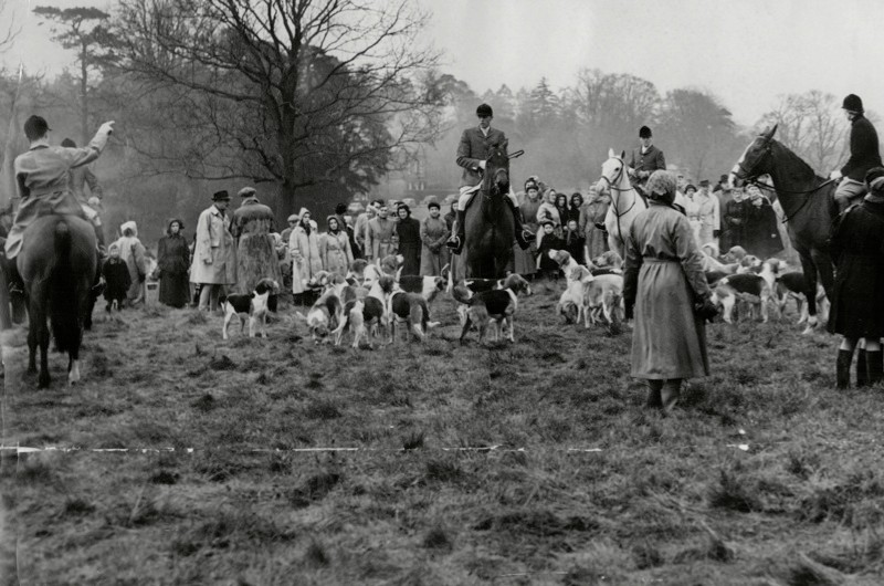 The Eridge Hunt, Boxing Day 1952. (Photo by REX/Associated Newspapers)