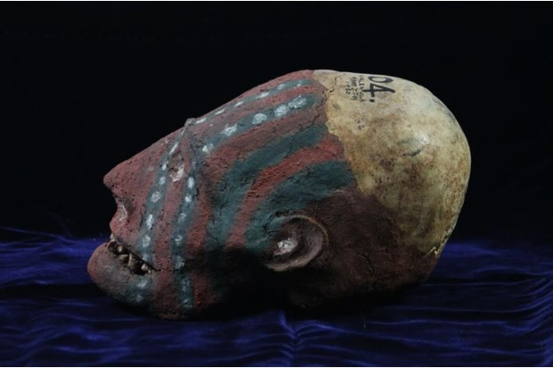A clay head from the Duckworth Collection at the University of Cambridge