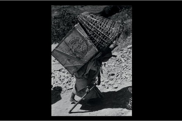 A sherpa carries a load up Everest