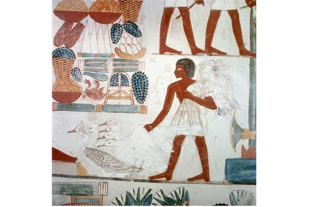 What Did People Eat In Ancient Egypt Historyextra