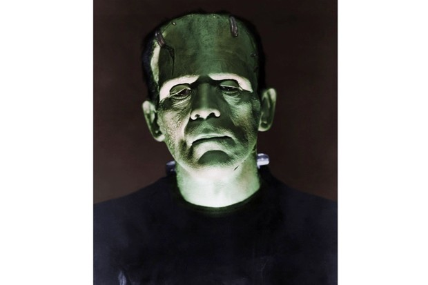 Mary Shelley's Frankenstein: the birth of a gothic monster