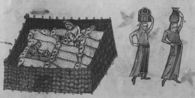 A pen of sheep and two women carrying jars can be seen in this drawing depicting life in medieval England.