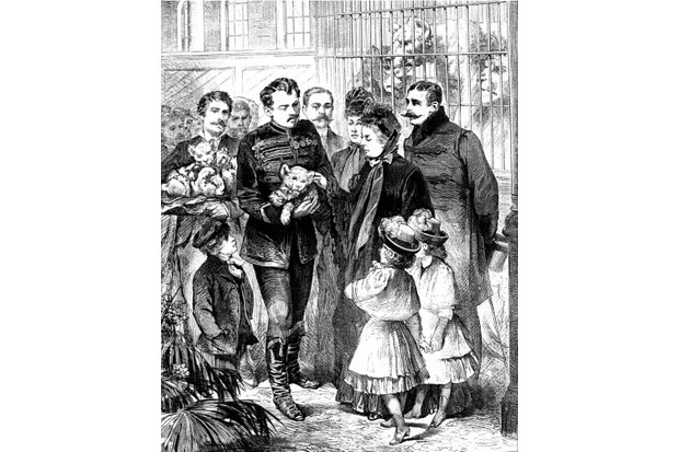 Queen Victoria and some of her grandchildren meet the lion cubs at a London circus in this engraving from the 19th century. (Universal History Archive via Getty Images)
