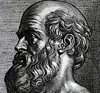 Hippocrates_rubens-4e6350d