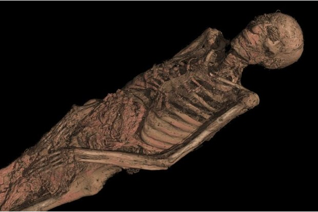 A CT scan of an ancient Egyptian mummy