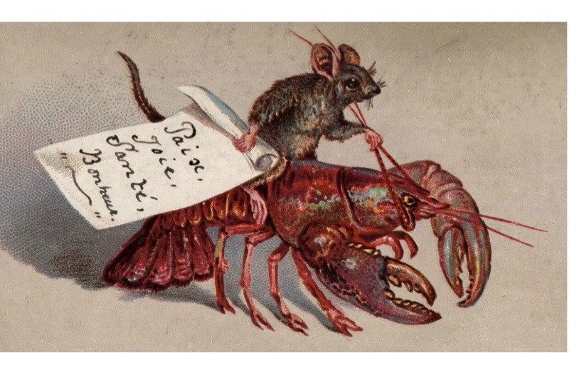 Lobster-Christmas-card-2-d0756e0