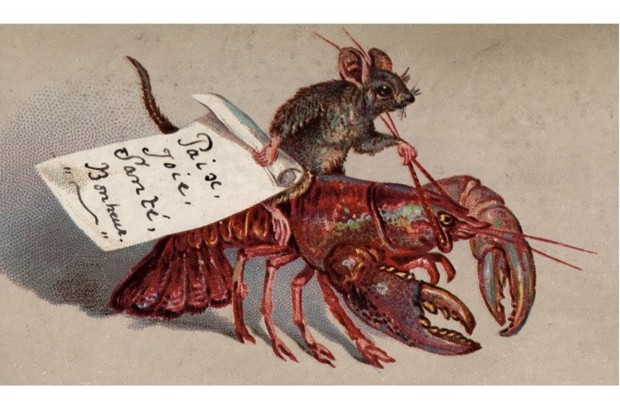 lobster christmas card 2 d0756e0