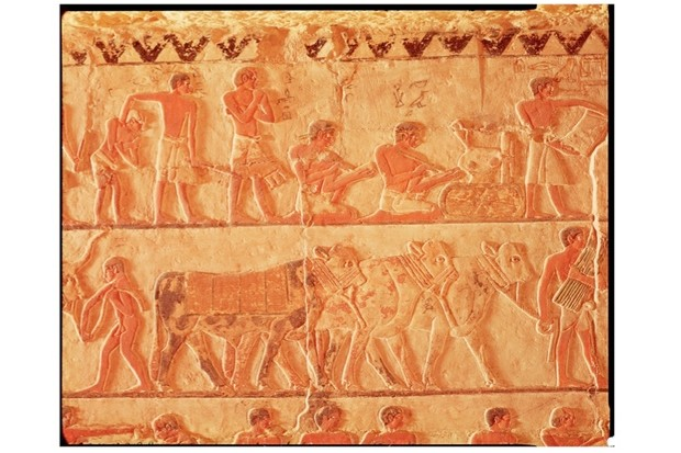 The truth about ancient Egypt