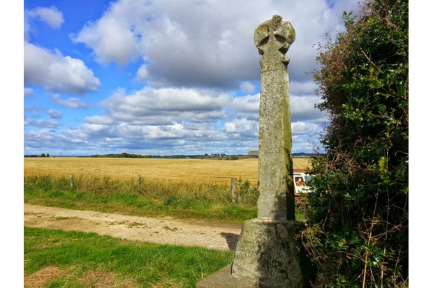 Lord Dacre's Cross. The memorial to the 1461 battle is named after one of the Lancastrians who was killed there. (Photo by Julian Humphrys)