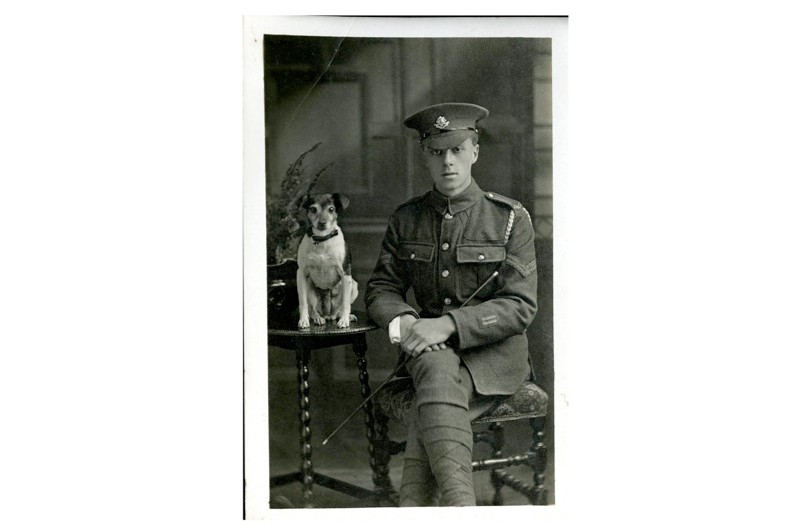WW1-dog-2-d3ad98d