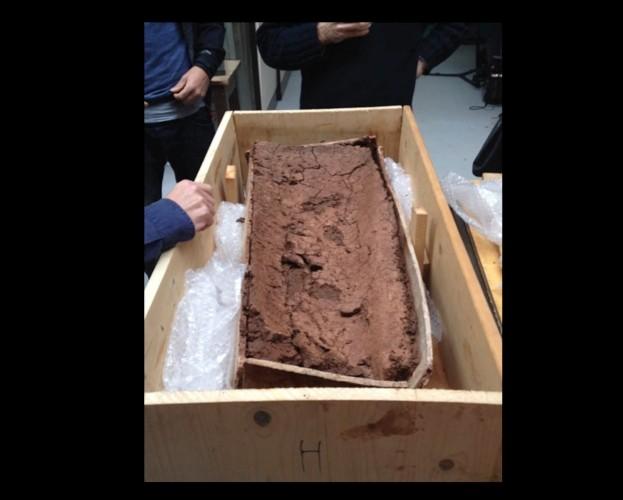 coffin-open-small-15656ce