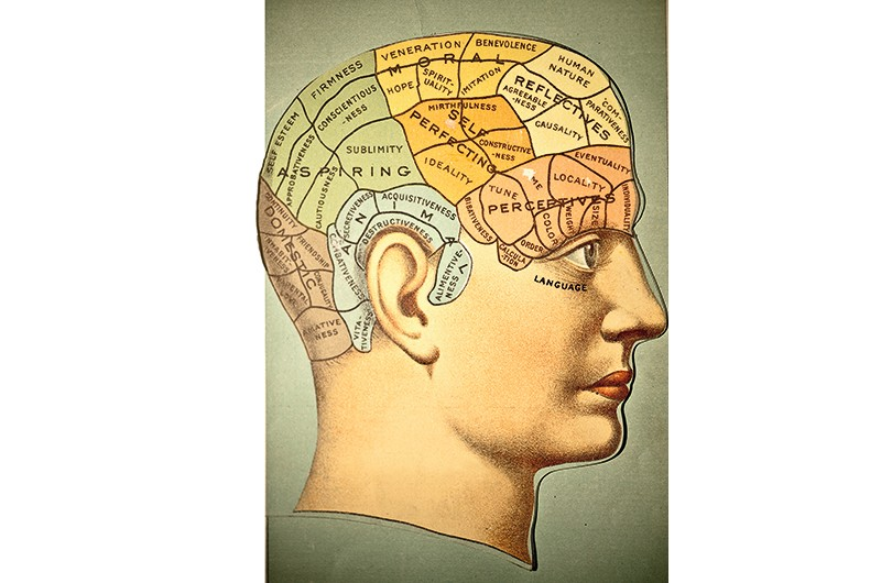 An illustration from 1883 shows the phrenology chart of the skull