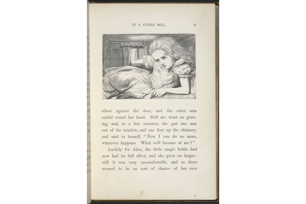 illustration-by-john-tenniel-from-the-first-edition-8c60191