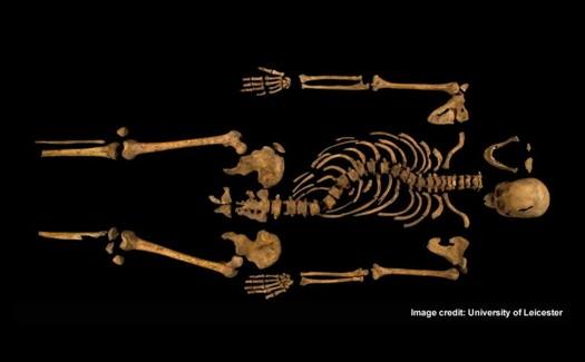 skeleton525-d5e1c19