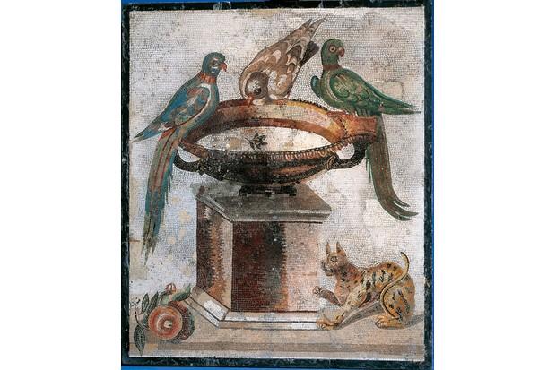 Roman mosaic depicting a cat and birds