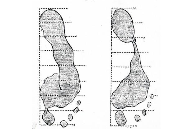 Forensic evidence, footprints