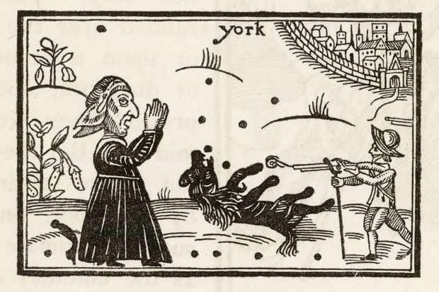 A woodcut showing Prince Rupert of the Rhine's pet poodle Boy being killed at the battle of Marston Moor, while a witch looks on. (Alamy)