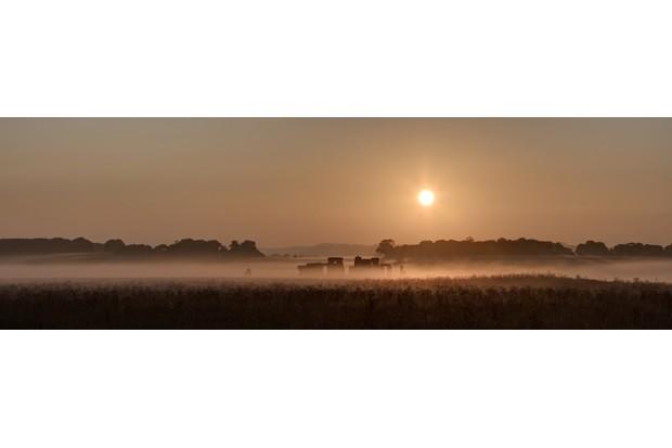A misty sunrise at Stonehenge, Wiltshire by Duncan Webster - Mawsley, UK (shortlisted)