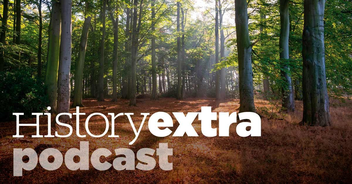 Sherwood Forest podcast