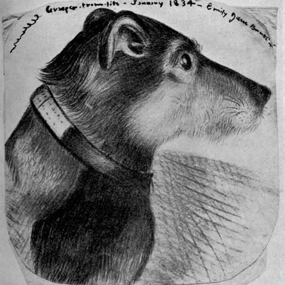A life drawing by Emily Brontë of her sister Charlotte Brontë's dog, Grasper. Dated January 1834. (Photo by Culture Club/Getty Images)