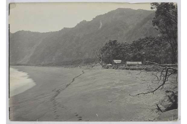 "The 'landing place' on the island of Raoul, where ""the Pacific surf beat furiously on the long, steep beach, which is surrounded by cliffs 250m high"". (Photo courtesy of Lydia Syson/Mr Peacock's Possessions)"