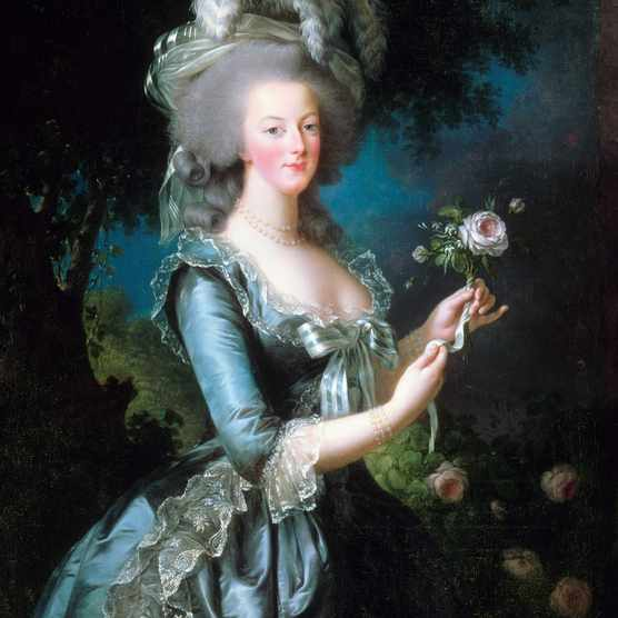 Portrait of Marie-Antoinette with the rose. Oil on canvas, Versailles. Dated 1783 and painted by Vigée-Le Brun. (Photo by: Universal History Archive/UIG via Getty Images)