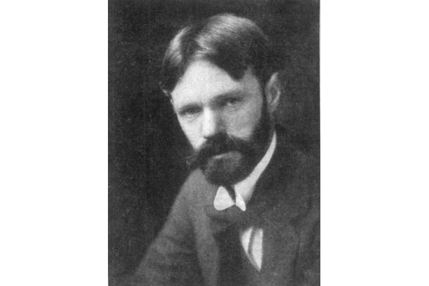 English novelist and poet DH (David Herbert) Lawrence (1885–1930). (Photo by Universal History Archive/Getty Images)