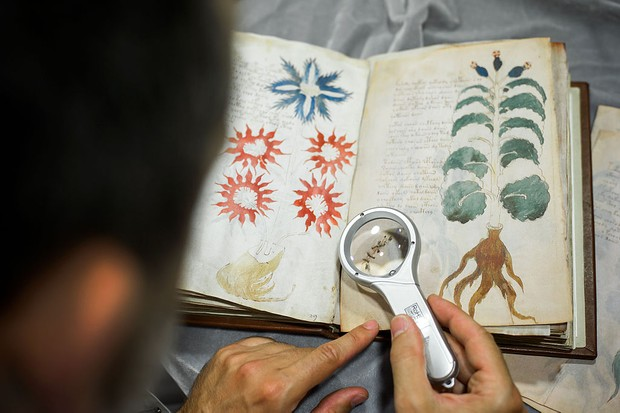 How the Voynich manuscript hit the headlines