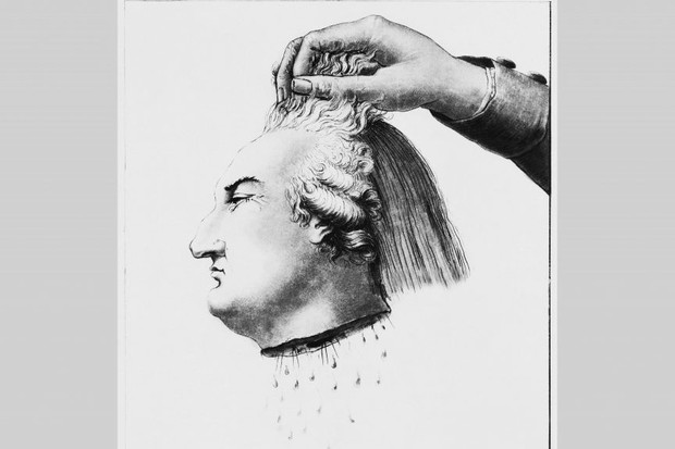 An illustration of the head of Louis XVI