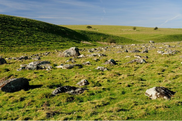 From a distance the grey sarsen stones resemble countless grazing sheep. (Image by Alamy)