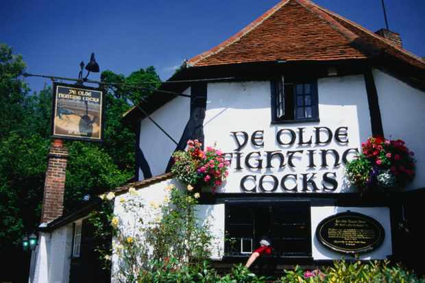Ye Olde Fighting Cocks pub, St Albans. The foundations have been there since 743. (Photo by Charlotte Hindle/Lonely Planet Images/Getty Images Plus)
