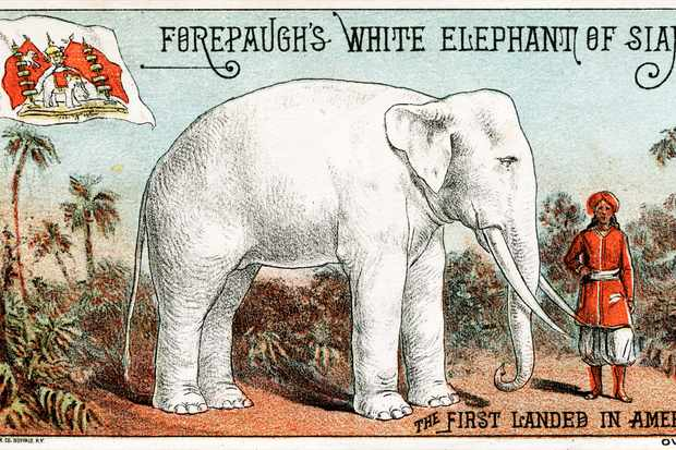 A lithographic Victorian trade card promoting the Forepaugh circus' new white elephant, Buffalo, New York, circa 1880. (Photo by Transcendental Graphics/Getty Images)