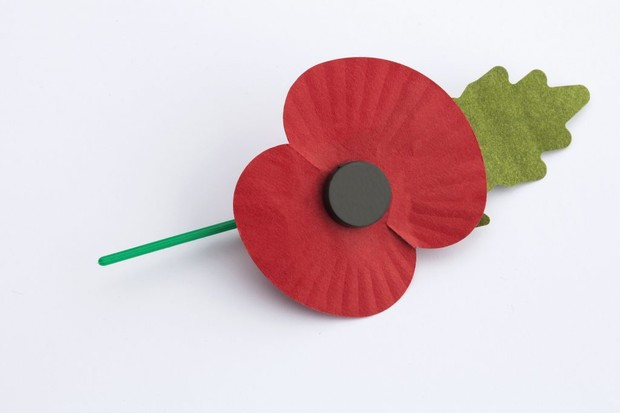 Photo of a remembrance poppy